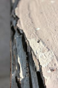 Termites can ruin the wood structure in your home!