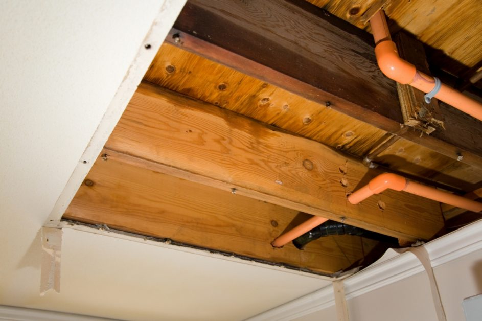 Wood Rafters With Moisture