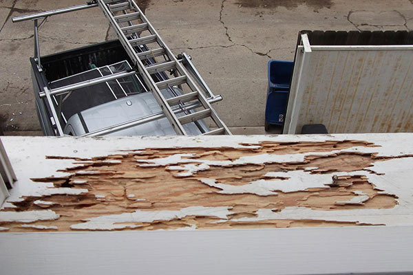 Termite damage can effect your structure!
