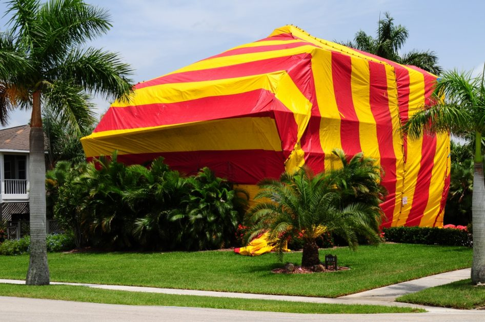 Home Tented for Termite Fumigation