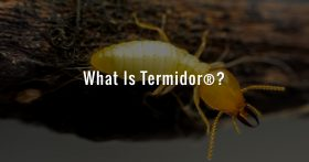 What Is Termidor®?