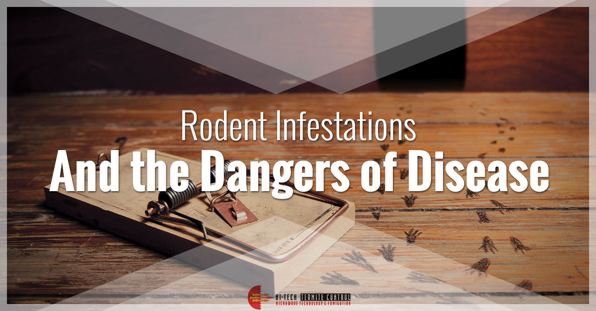 Rodent Infestations Banner