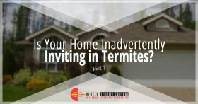Is Your Home Inviting Termites Banner