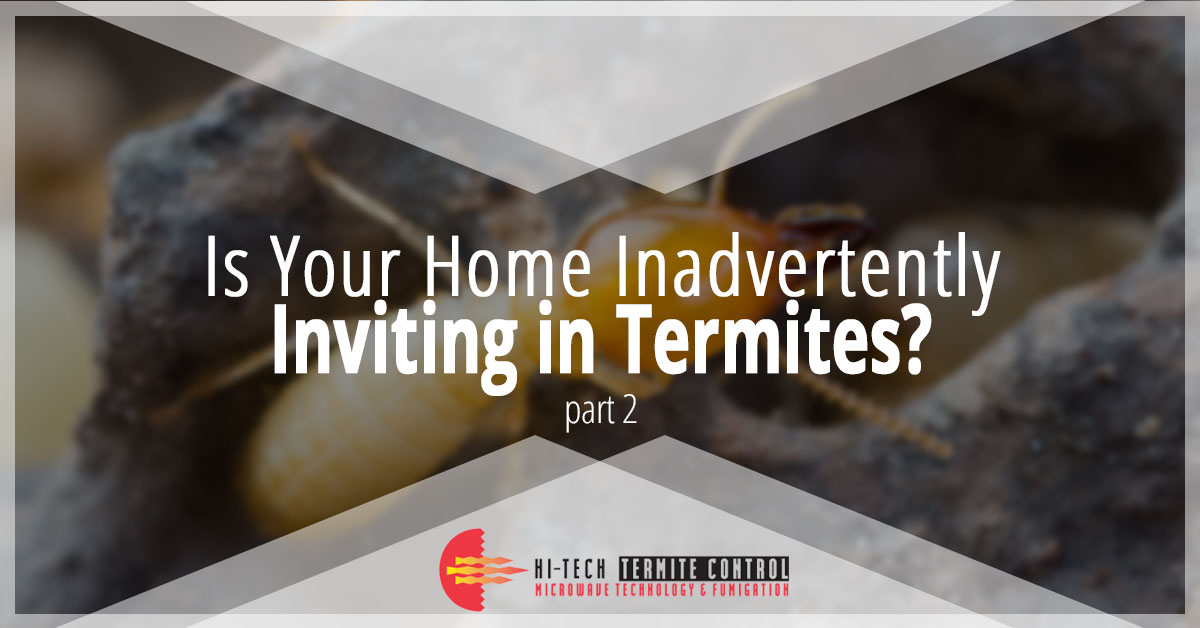 Is Your Home Inviting Termites Banner Two