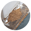 Termite Droppings Icon