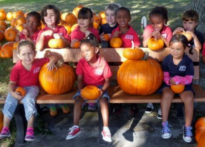 It's pumpkin carving season here at our daycare center!