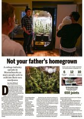Article about Home Grow Community, our in-home cannabis cultivation service in Massachusetts