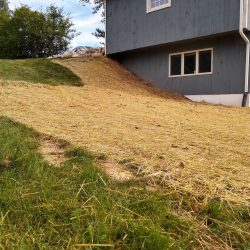 regraded hillside