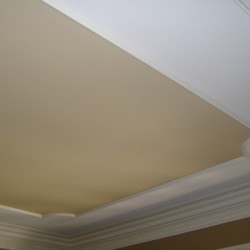 This intricate ceiling brings charm and character to this house remodeling project by Home Services Direct in Chicago.