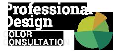 Professional Color Icon