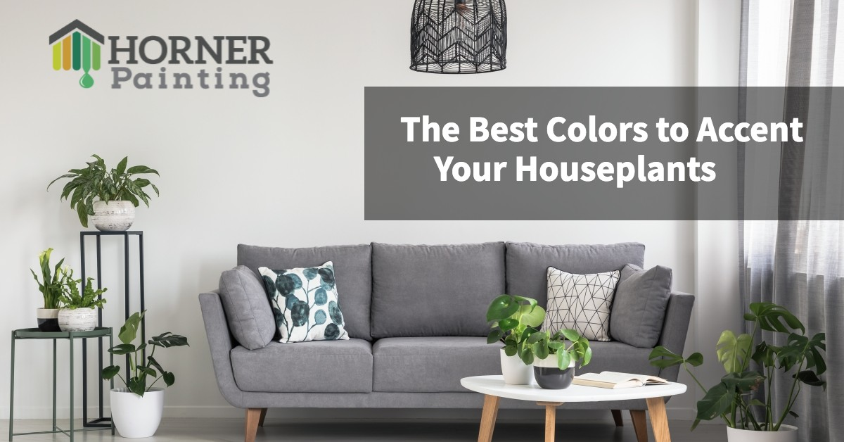 The Best Colors to Accent Your Houseplants Banner