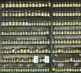Different health supplements lined up on shelf