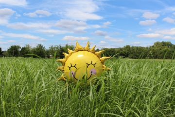 An image of a sun shaped balloon sitting in the middle of a field.