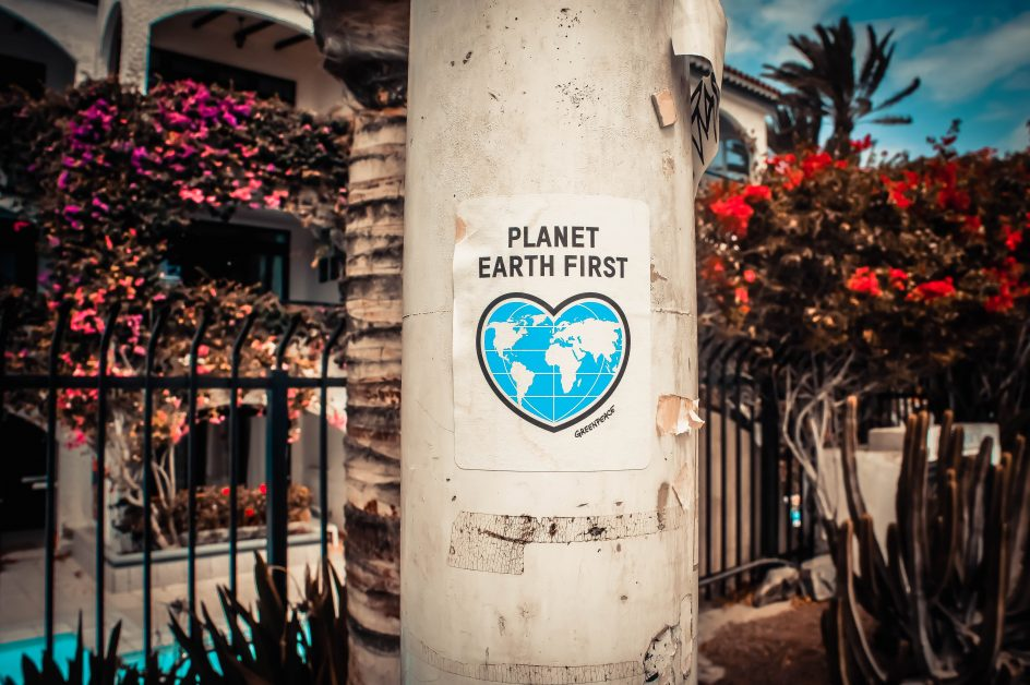 "An image of a sign on a poll that reads ""Planet Earth First"""