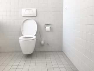 An image of a bathroom toilet.