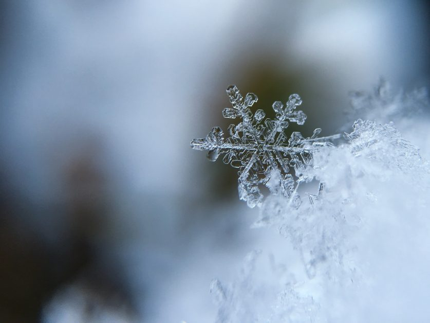 An image of a snowflake.