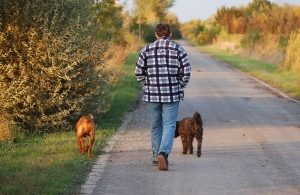 walking-your-dog-2-300x195