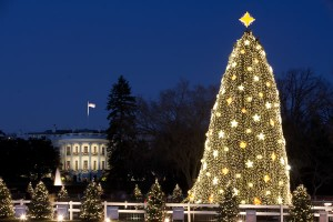 white_house_and_the_national_christmas_tree_insert