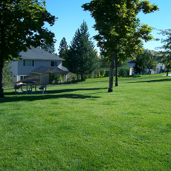 Large Area Lawn Maintenance