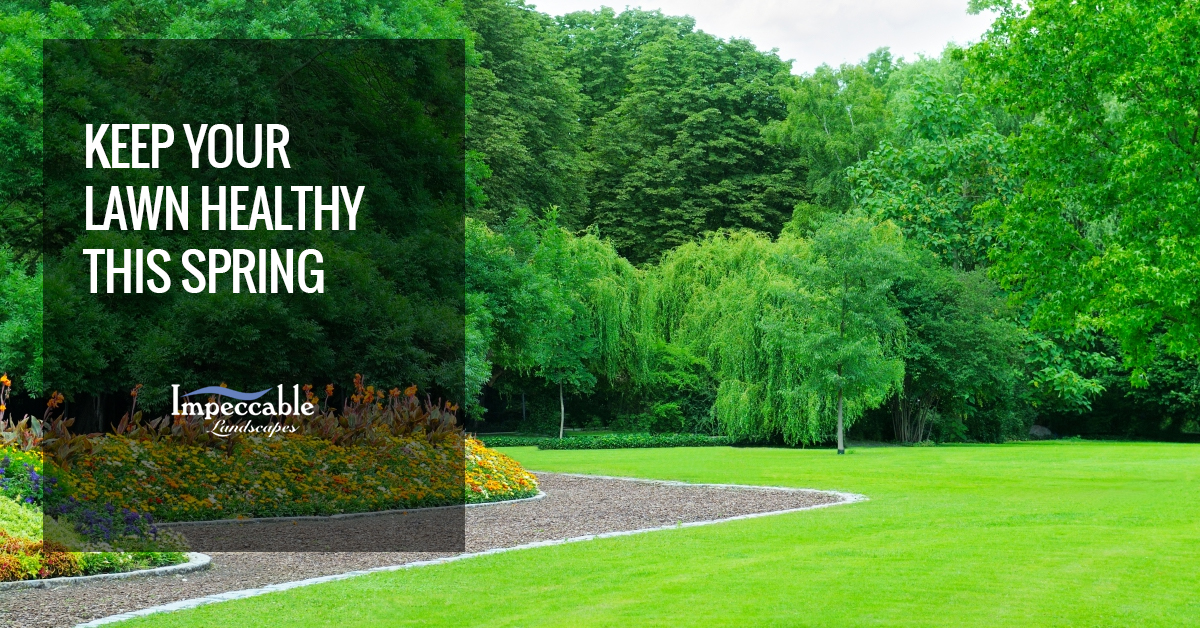 aeration-spring-lawn