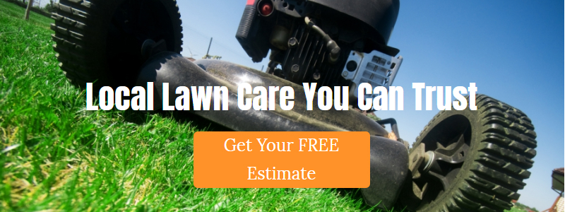 Local lawn care you can trust. Call Impeccable Landscapes!