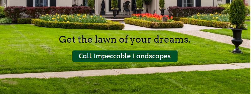 Get-the-lawn-of-your-dreams