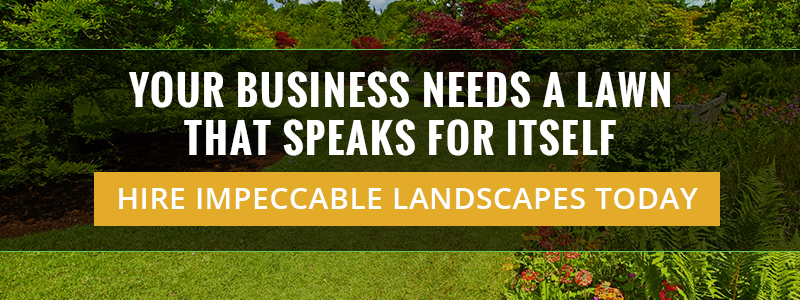 Your Business Needs A Lawn That Speaks For Itself