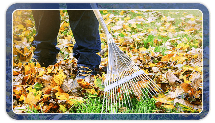 Image of a person raking leaves on their lawn