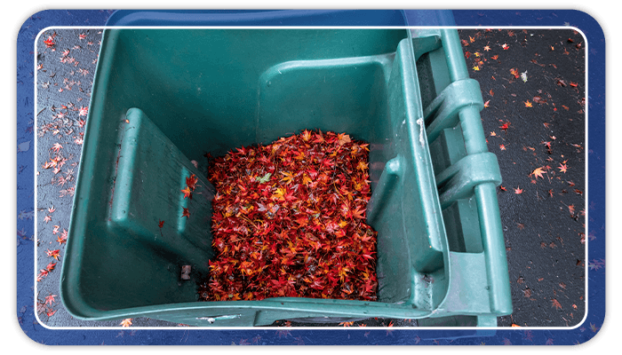 Image of yard waste container filled with leaves towards the beginning of winter