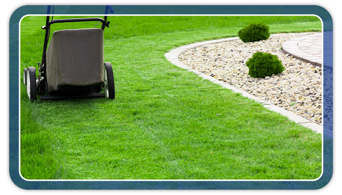 Image of a push lawn mower stopped during mowing.