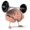 brain_squarethumb