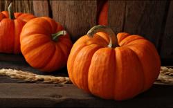 pumpkin_mediumthumb
