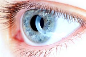 Optometrist -