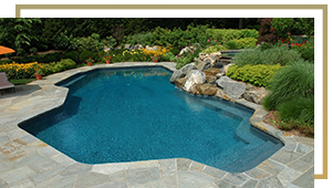 ivy studio custom swimming pool design