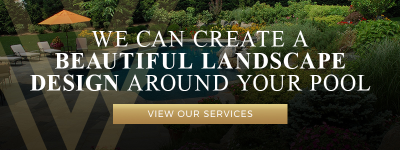 We Can Create A Beautiful Landscape Design Around Your Pool