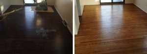 Freshly refinished dark hardwood floor
