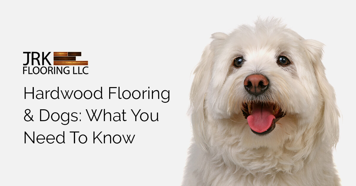 Dogs and Hardwood Flooring Featured Image
