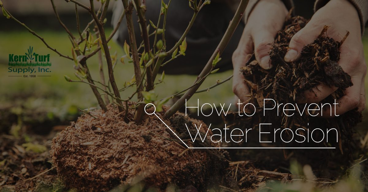 Landscape Supply Bakersfield: How to Prevent Water Erosion