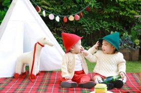twins on a picnic