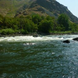 the beautiful scenery of Hells Canyon