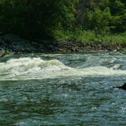 The rapids in the water