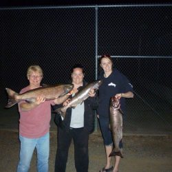 Three woman each holding a large salmon at night