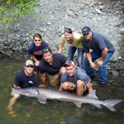 a group holding a sturgeon