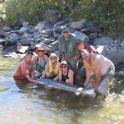 a large group of people and a medium sized sturgeon