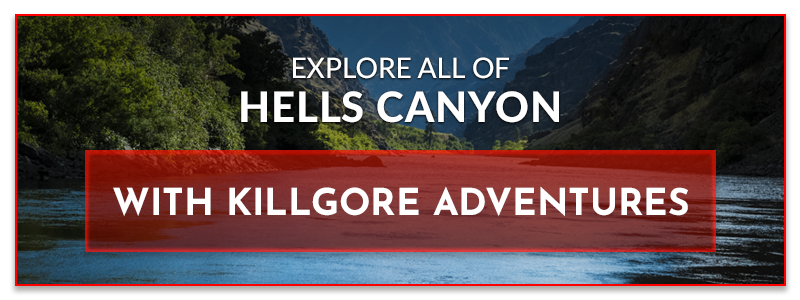 ATV Tour - ATV Riding For Beginners | Killgore Adventures