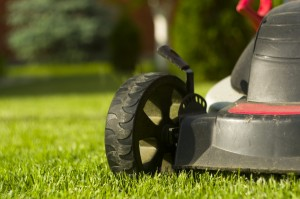 Lawn Mowing in Tampa
