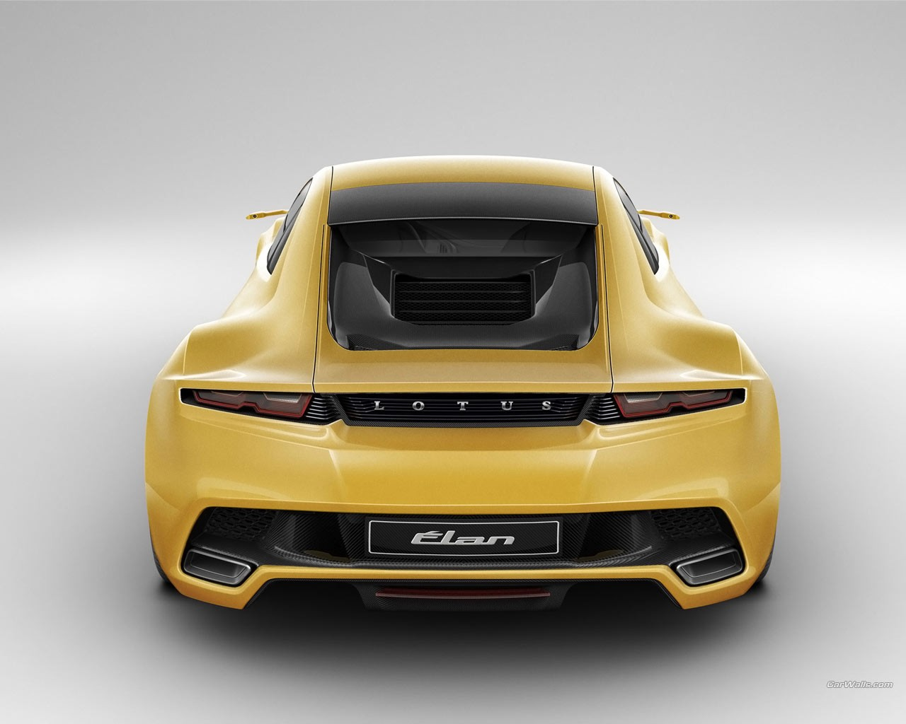 Lotus | Kudos Luxury Import