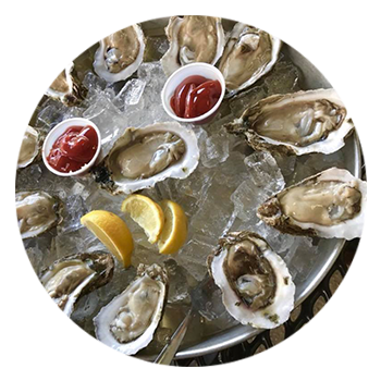 Anchor Inn Tiki Bar & Grille - Seafood - Restaurant - Lake Worth - Lantana - Raw Oysters
