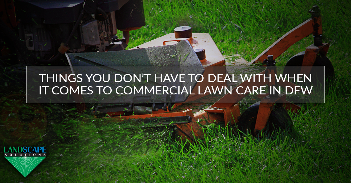 Things You Don't Have To Deal With When It Comes to Commercial Lawn Care In DFW