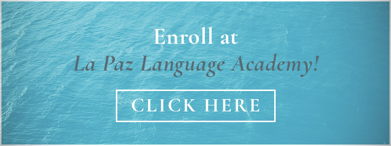 Tips And Tricks For Learning A New Language — Enroll At Our El Paso